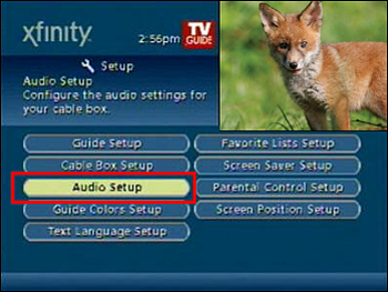 Setup screen with Audio Setup highlighted.