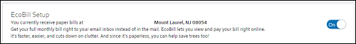 EcoBill Setup page set to On.
