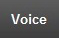 The tab for voice is depicted