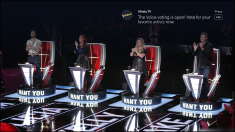 The Voice Vote pop-up message and info button is on the right side of the screen
